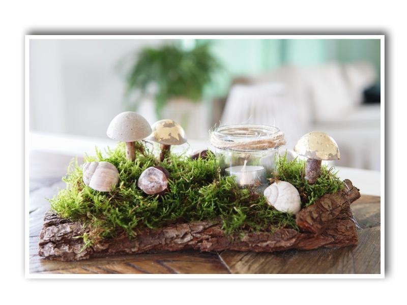 DIY Herbstdeko: Pilze aus Beton