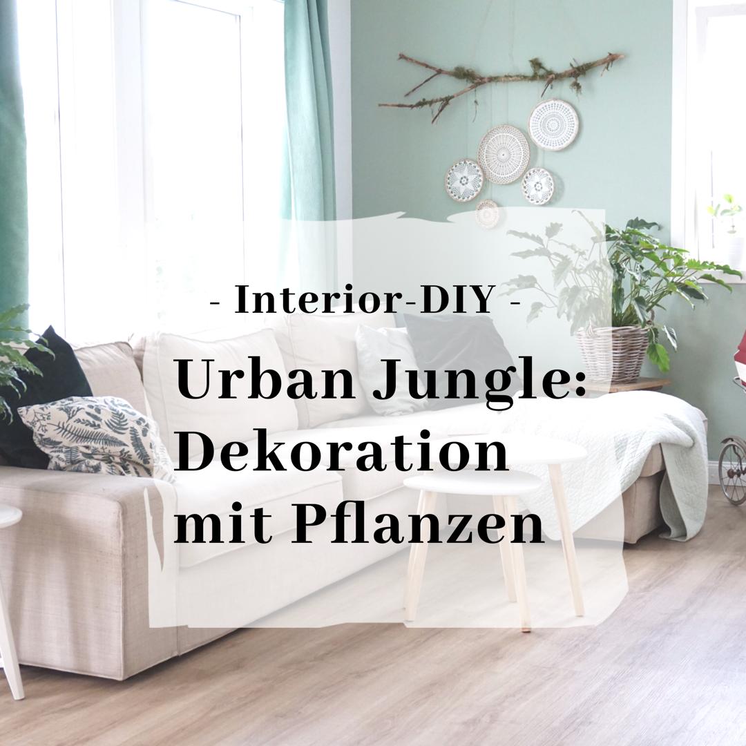 Urban Jungle: Pflanzen als Deko