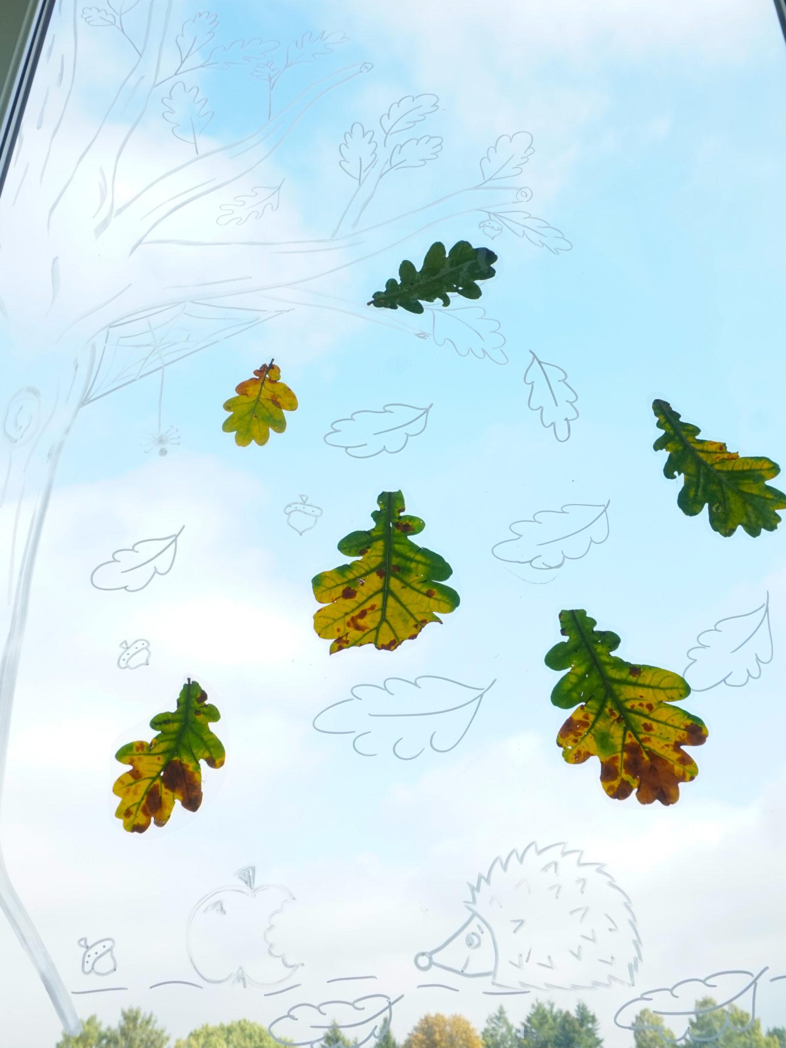 Herbst fensterbilder deko hus - Herbst fensterbilder ...